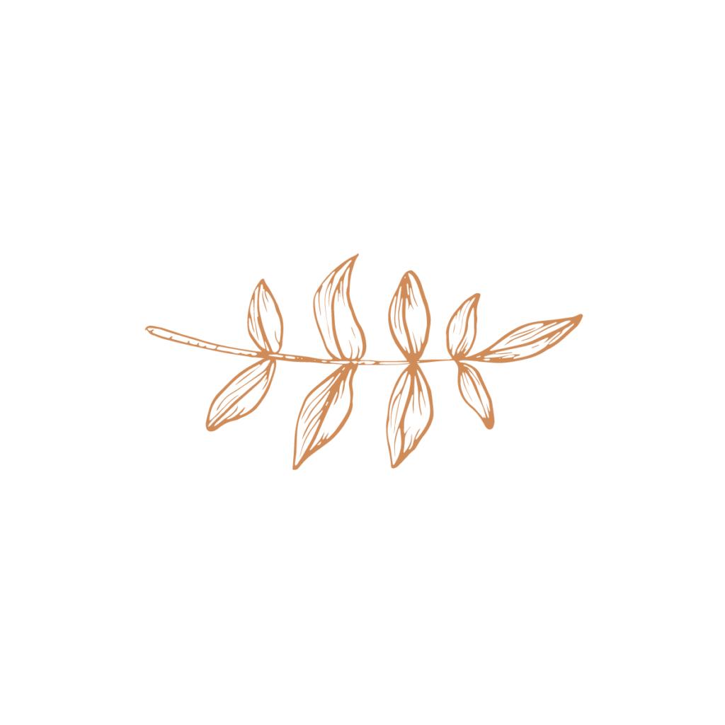 Sush organics_03 - 07